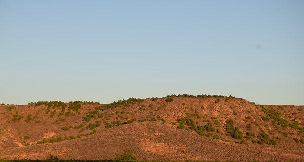 Cabezo La Torre en Aldeanueva de Ebro se trata de la ubicación donde quieren realizar el parque eólico de La Aldea.